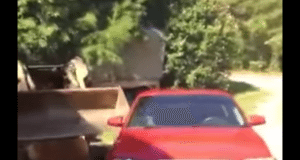 Dad destroys daughters AUDI after he caught her fooling around with a boy in the car
