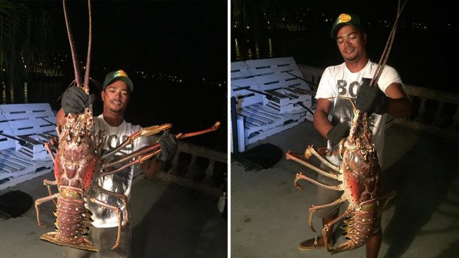Fisherman Discovers Giant 14-Pound Lobster: 'Never In My Life Have I Seen Anything This Big'