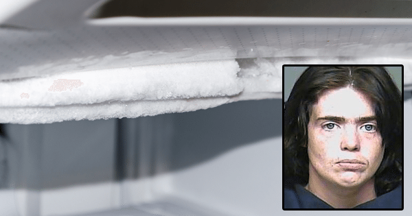 Mom Who Locked 4-Day-Old Baby In Refrigerator For 3 Hours Is Going Home For Christmas