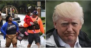 donald trump and storm harvey