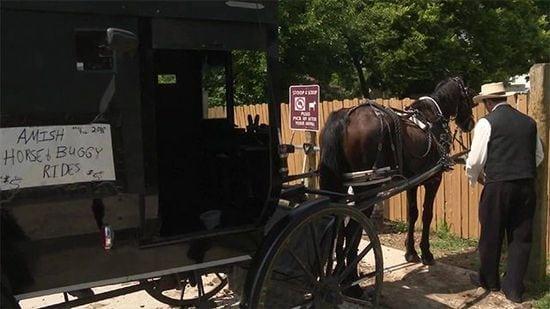 Amish Uber